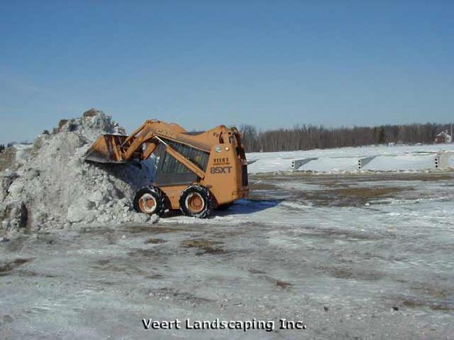 snow_bobcat1_lg