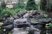 Residential Ponds
